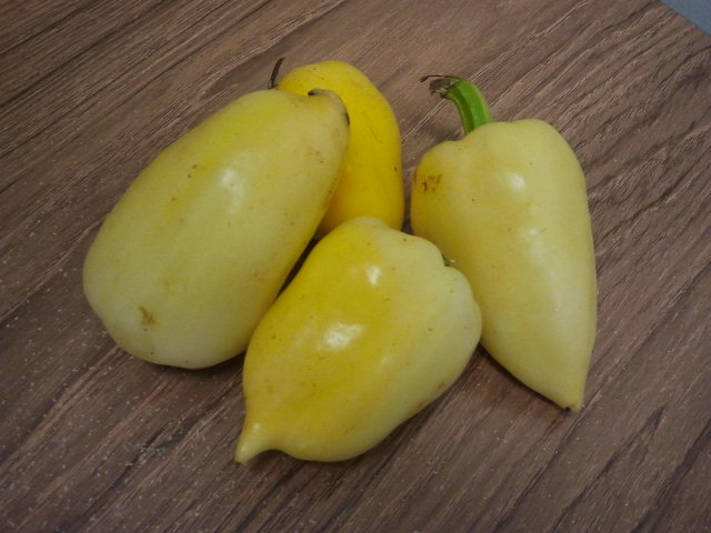 Romanian Peppers
